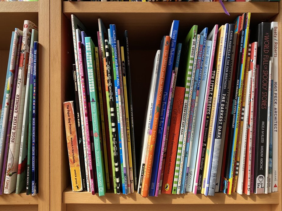 children's bookshelf audit
