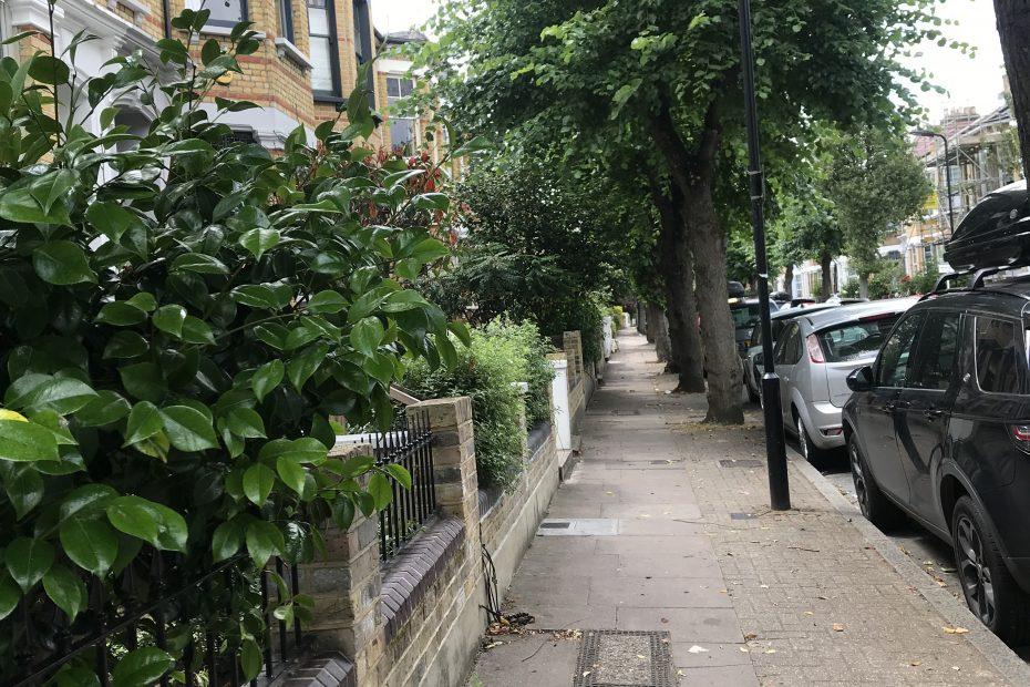 street for environmental survey