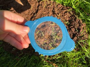looking at soil through a magnifying glass